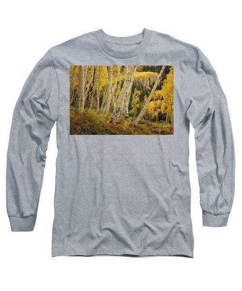 Colorado Fall Aspen Grove Long Sleeve T-Shirt