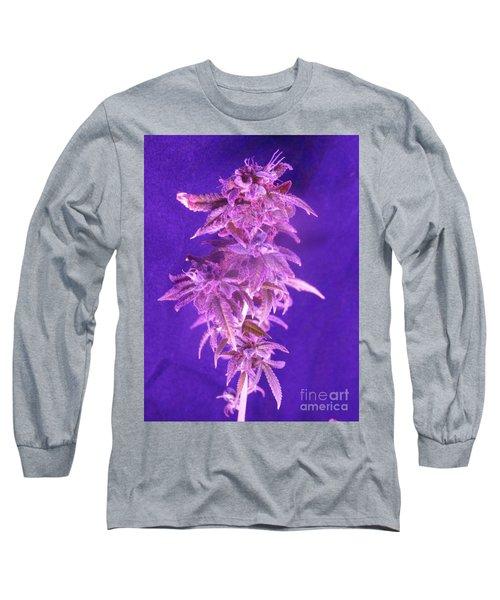 Colorado Rocksy Long Sleeve T-Shirt