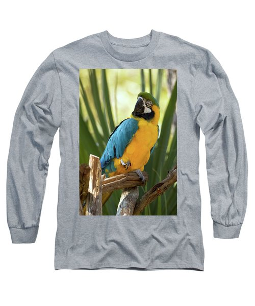 Colorful And Smart Long Sleeve T-Shirt