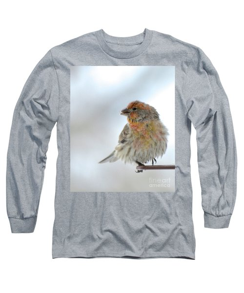 Colorful Finch Eating Breakfast Long Sleeve T-Shirt