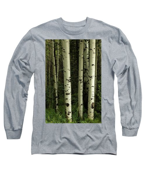 Long Sleeve T-Shirt featuring the photograph Colors And Texture Of A Forest Portrait by James BO Insogna