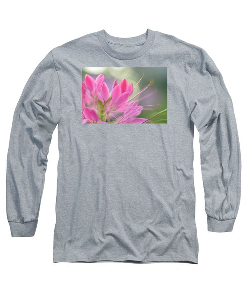 Colourful Greeting II Long Sleeve T-Shirt by Janet Rockburn