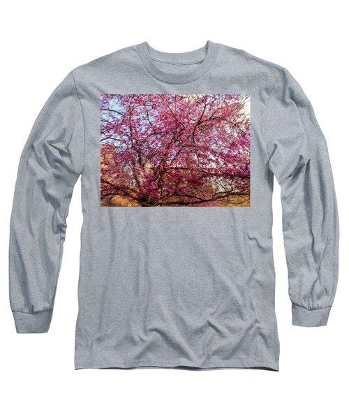 Columnar Sargent Cherry 1 Long Sleeve T-Shirt