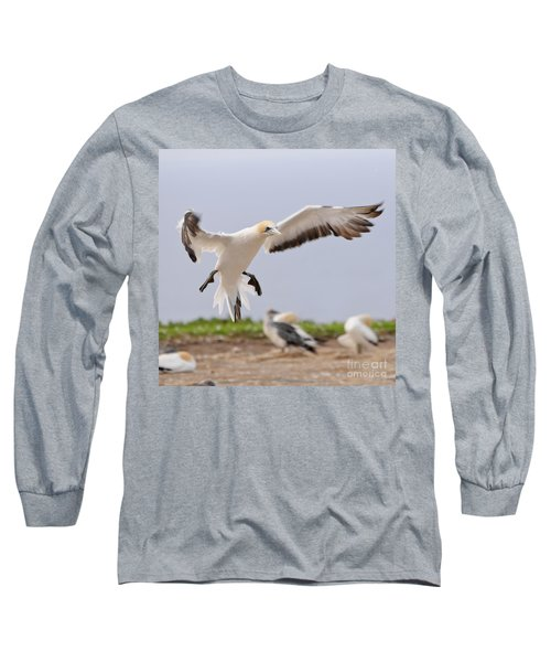 Coming In To Land Long Sleeve T-Shirt by Werner Padarin