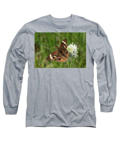 Common Buckeye Butterfly On Wildflower Long Sleeve T-Shirt by Sheila Brown