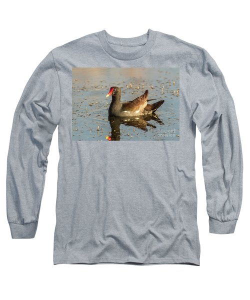 Common Gallinule Long Sleeve T-Shirt by Robert Frederick