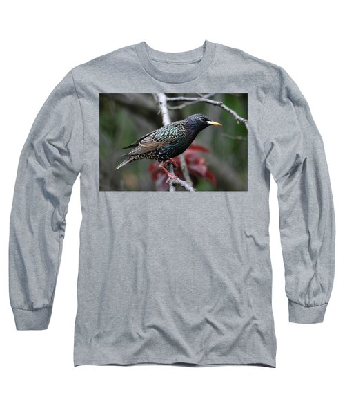 Common Starling Long Sleeve T-Shirt by Trina Ansel