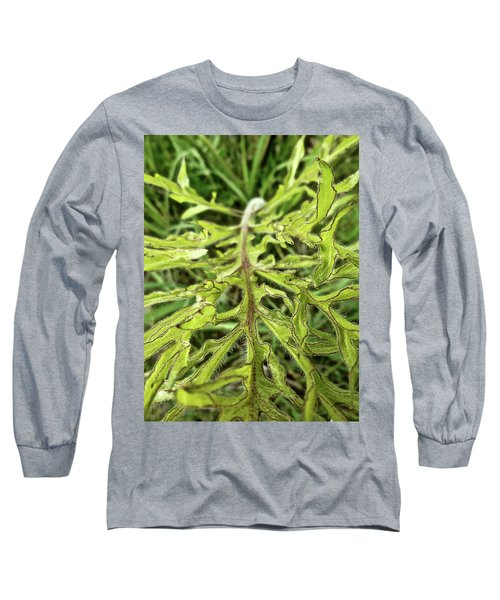 Compass Plant Long Sleeve T-Shirt by Tim Good