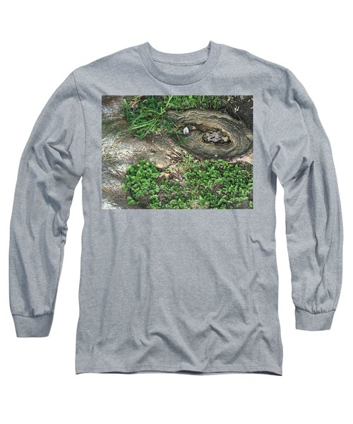 Composition In Trees Long Sleeve T-Shirt