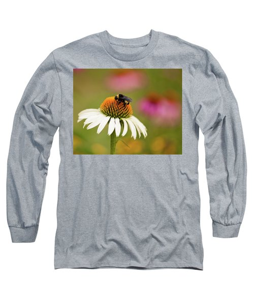 Coneflower And Bee Long Sleeve T-Shirt by Phyllis Peterson