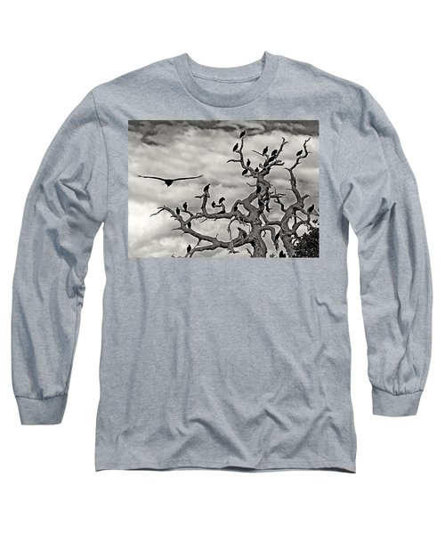 Congress Of Vultures Long Sleeve T-Shirt
