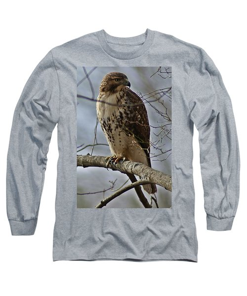 Cooper's Hawk 2 Long Sleeve T-Shirt