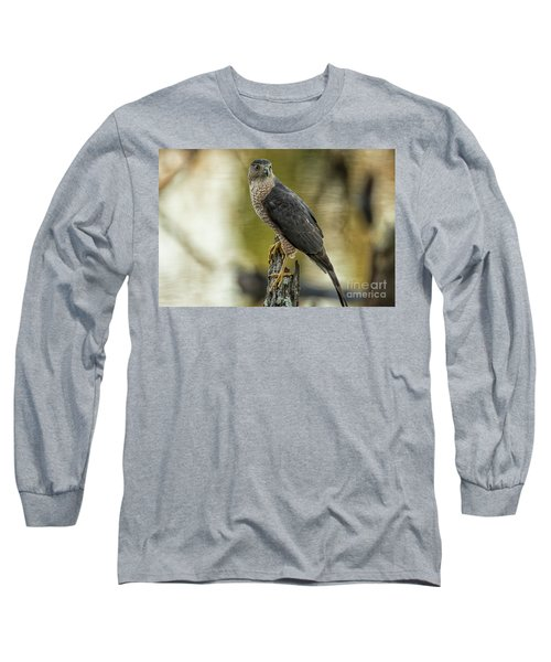 Cooper's Hawk Long Sleeve T-Shirt