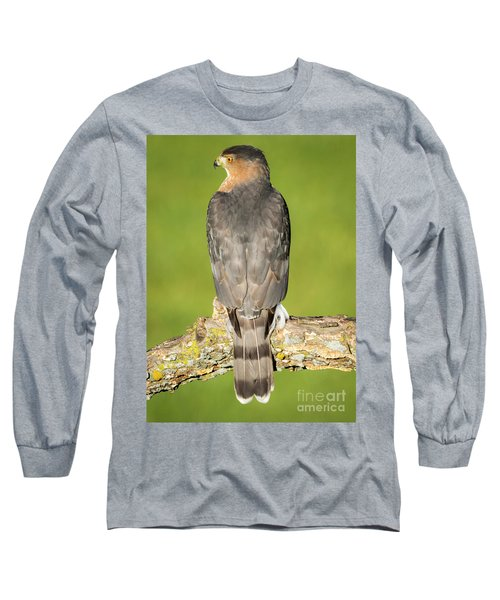 Cooper's Hawk In The Backyard Long Sleeve T-Shirt