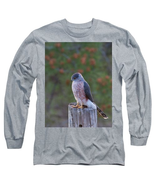 Coopers Hawk Perched Long Sleeve T-Shirt