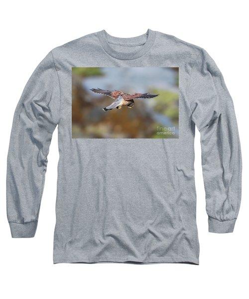 Long Sleeve T-Shirt featuring the photograph Cornish Kestrel Hunting by Nicholas Burningham