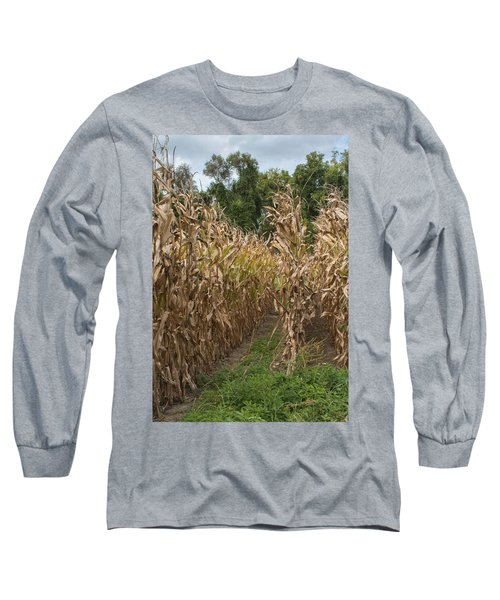 Cornstalks Long Sleeve T-Shirt by Arlene Carmel