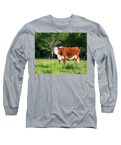 Cow #1 Long Sleeve T-Shirt