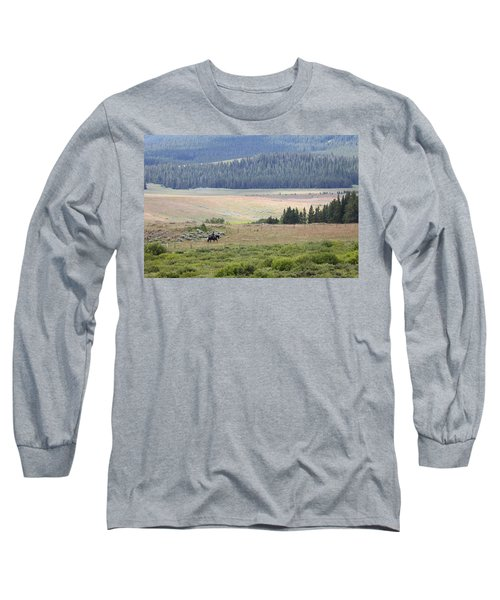 Cow Camp View Long Sleeve T-Shirt