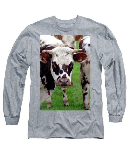 Cow Closeup Long Sleeve T-Shirt