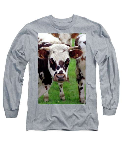 Cow Closeup Long Sleeve T-Shirt