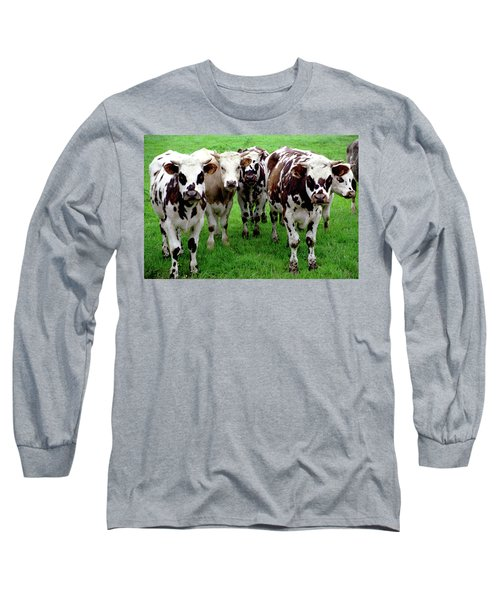Cow Group Long Sleeve T-Shirt
