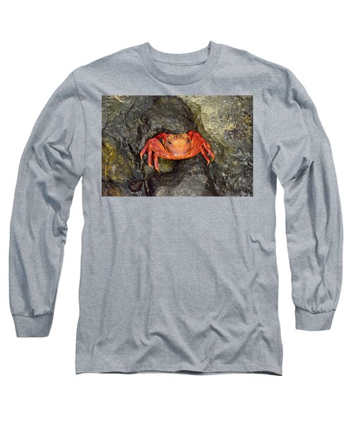 Crab Long Sleeve T-Shirt by Will Burlingham