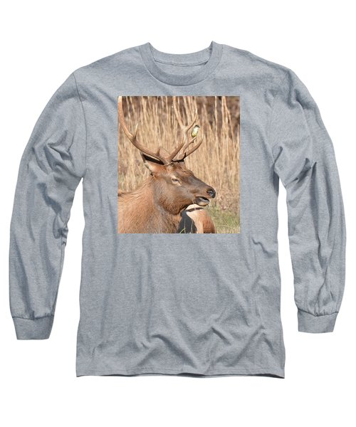 Creatures Great And Small Long Sleeve T-Shirt by Alan Lenk