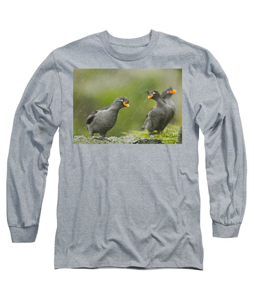 Crested Auklets Long Sleeve T-Shirt