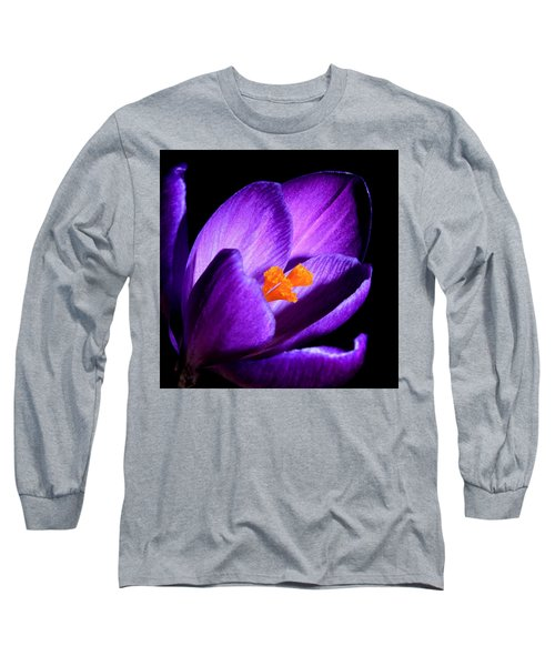 Crocus Long Sleeve T-Shirt by Tammy Schneider