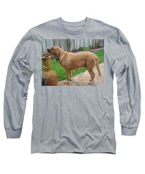 Cujo Getting A Scent Long Sleeve T-Shirt by Val Oconnor