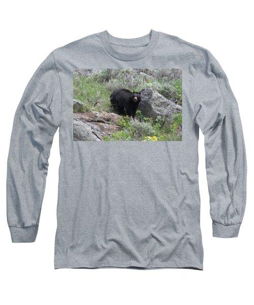 Curious Black Bear Long Sleeve T-Shirt