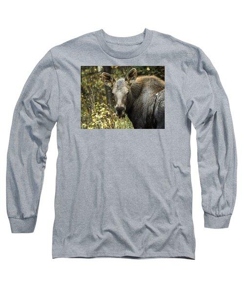 Curious Calf Long Sleeve T-Shirt