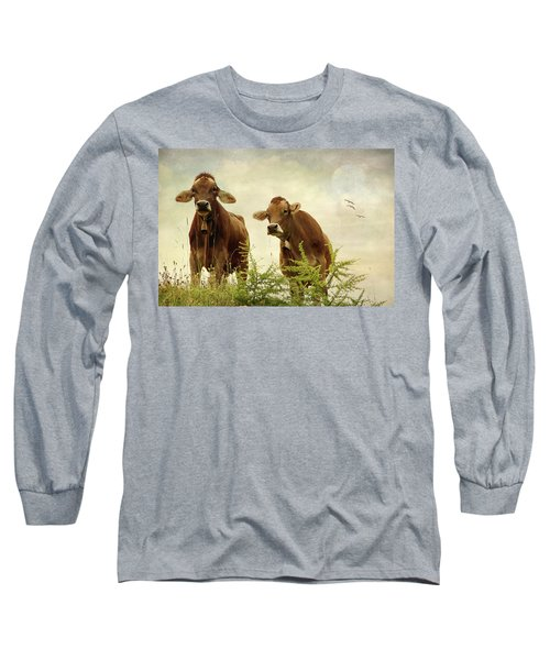 Curious Cows Long Sleeve T-Shirt