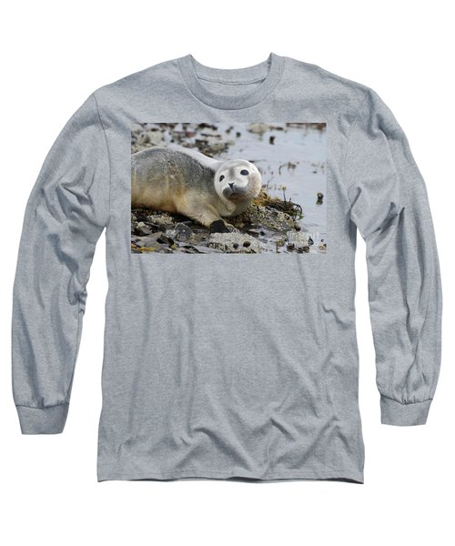 Curious Harbor Seal Pup Long Sleeve T-Shirt