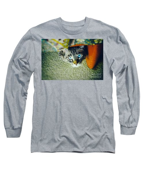 Long Sleeve T-Shirt featuring the photograph Curious Kitty by Silvia Ganora