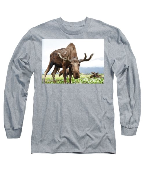 Curious Moose Long Sleeve T-Shirt