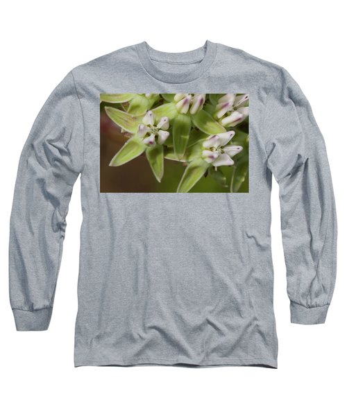 Curtiss' Milkweed #4 Long Sleeve T-Shirt
