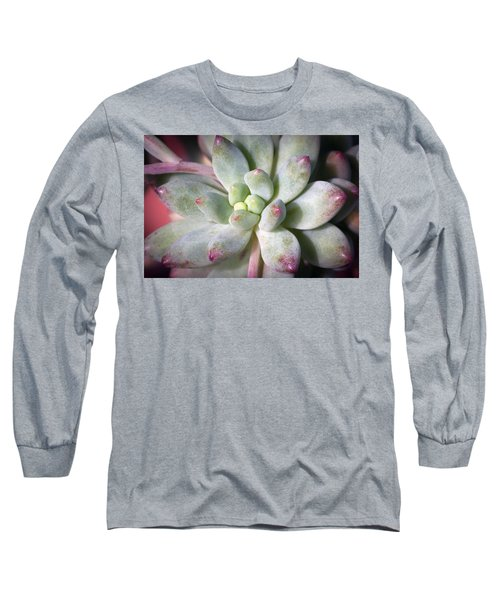 Cute Succulent Plant Long Sleeve T-Shirt by Catherine Lau