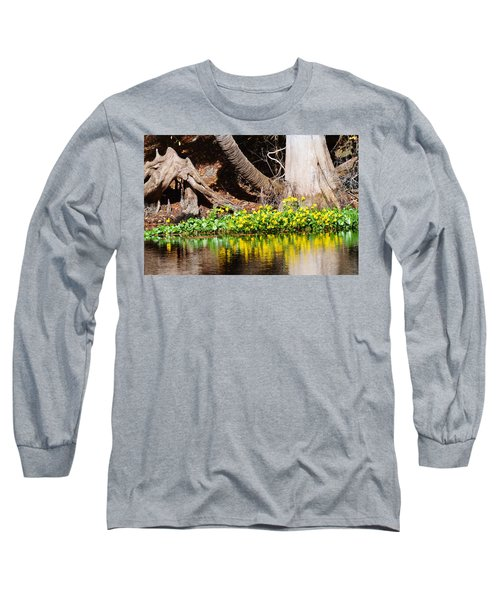 Cypress And Flower Reflections Long Sleeve T-Shirt by Warren Thompson