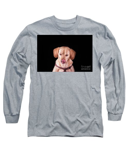 Dachshund Mix Licking Lips Long Sleeve T-Shirt by Stephanie Hayes