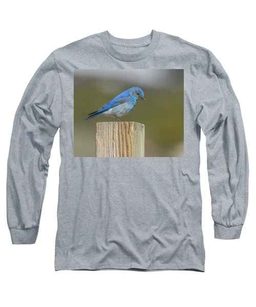 Daddy Bluebird Guarding Nest Long Sleeve T-Shirt