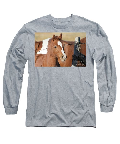 Daddys Home Long Sleeve T-Shirt by Pamela Walrath