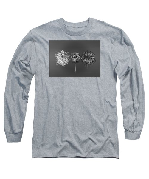 Dahlia Grouping 1 Long Sleeve T-Shirt by Simone Ochrym