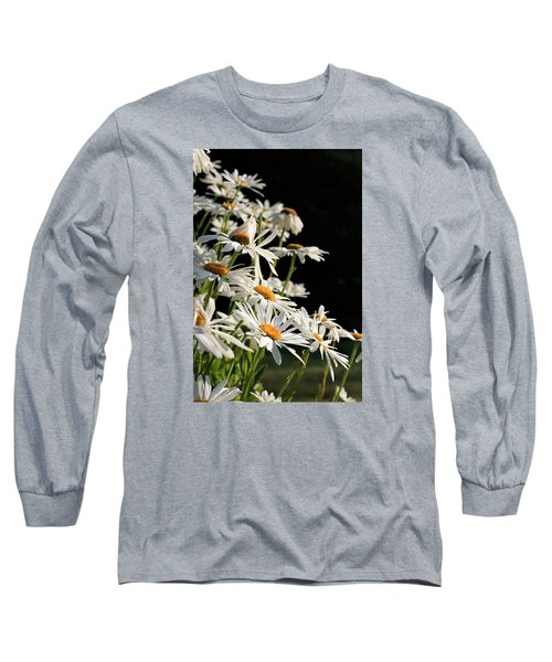 Daisies Long Sleeve T-Shirt by Dorothy Cunningham