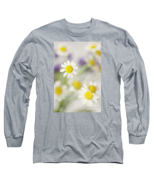 Daisies In Morning Mist Long Sleeve T-Shirt