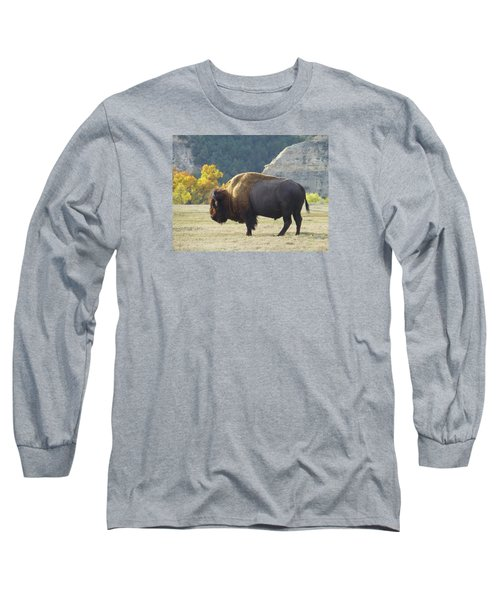Dakota Badlands Majesty Long Sleeve T-Shirt
