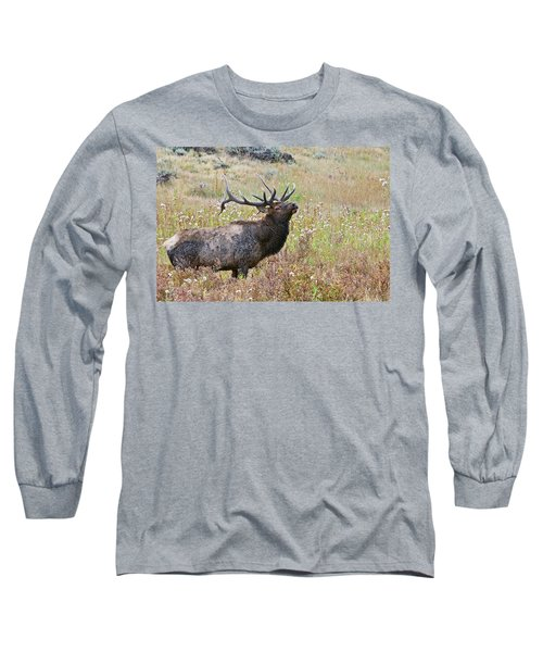 Long Sleeve T-Shirt featuring the photograph Dapper Dan by Gary Lengyel