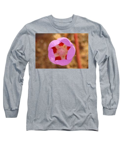 Death Valley Superbloom 402 Long Sleeve T-Shirt by Daniel Woodrum