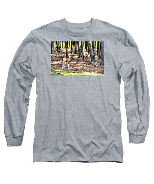 Deer In The Summer Forest Long Sleeve T-Shirt by James Potts